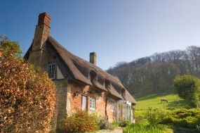 Pet Friendly Cottages Cumbria - Find Cottages for dogs